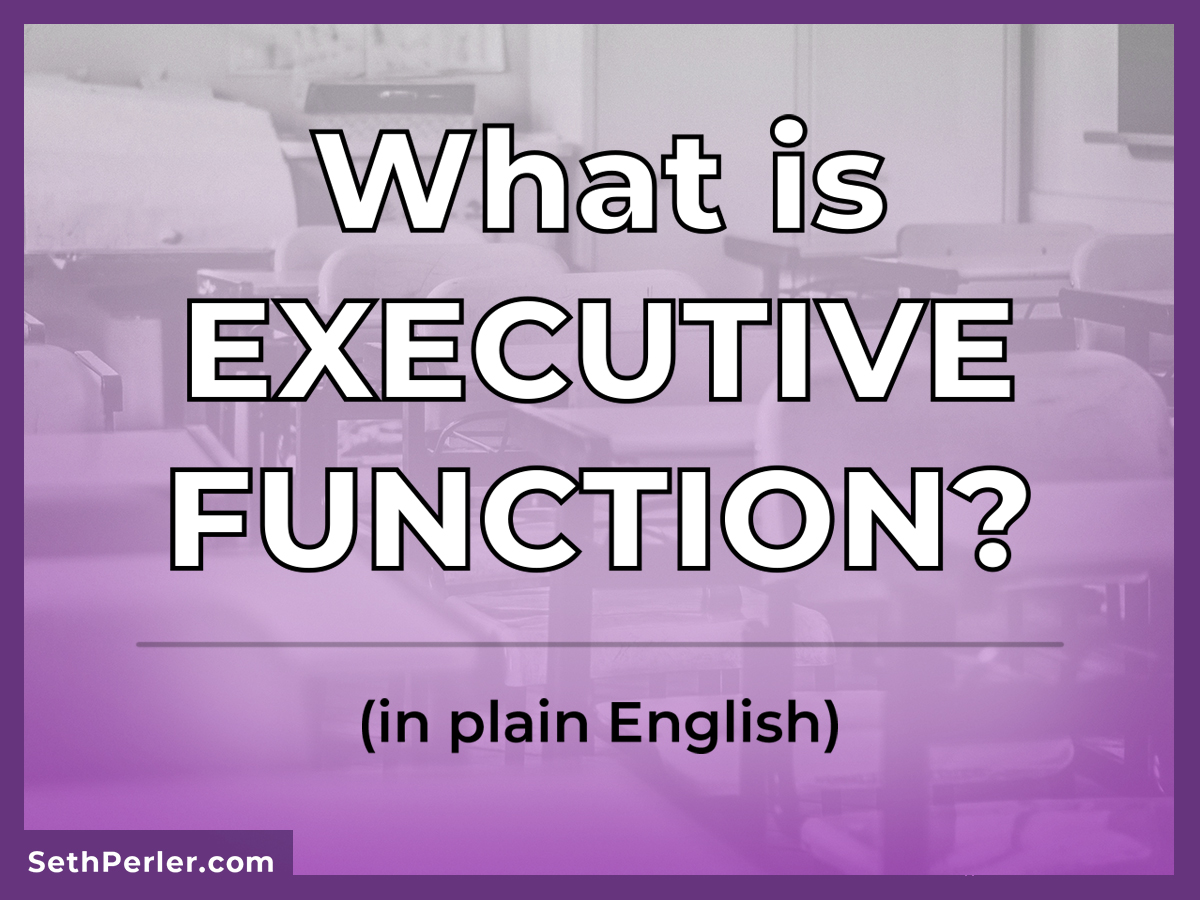 What Is Executive Function In Plain English Seth Perler