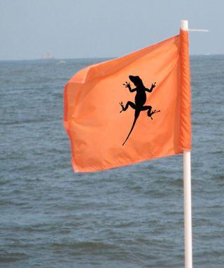 Lizardflag
