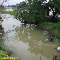 sungai lamong