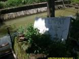 kolam air tujuh sumber di temuguruh