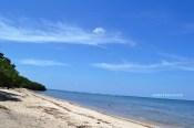 eloknya pantai Bama Situbondo