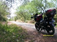 jalan di TN Baluran