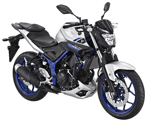Yamaha MT-25 Silver Blue (1)