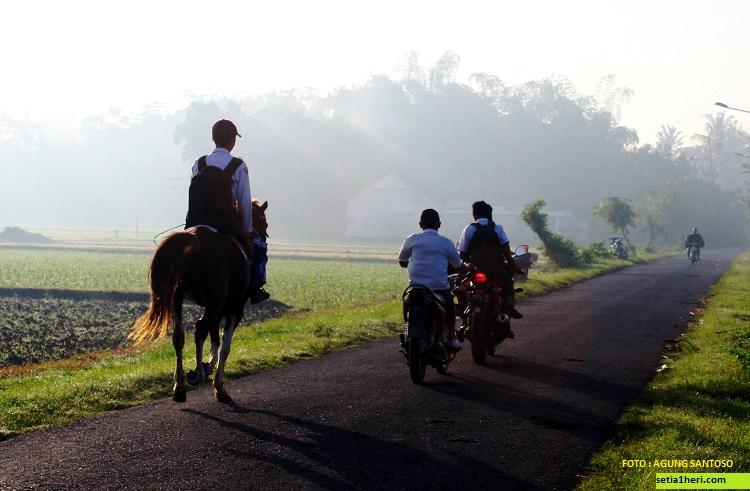 ulil albab pelajar SMPIT Ibnu Sina wuluhan jember pergi ke sekolah naik kuda (3)