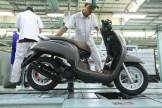 Pilihan warna dan stripping baru New Honda Scoopy tahun 2018 (2)