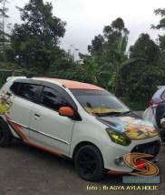 Kumpulan gambar modifikasi cutting sticker mobil Agya dan Ayla (18)