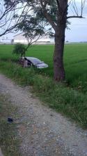 mobil kecelakaan di sawah (2)