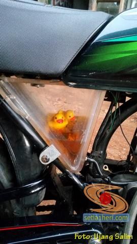 Tabung oli samping Yamaha RX King ini ada bebek mengambangnya...hehehe (3)