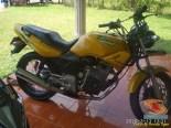 Kumpulan foto nostalgia Honda Tiger 2000 warna kuning brosis.. (5)