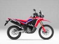 Tampilan Facelitf Honda CRF250 RALLY tahun 2021 (1)