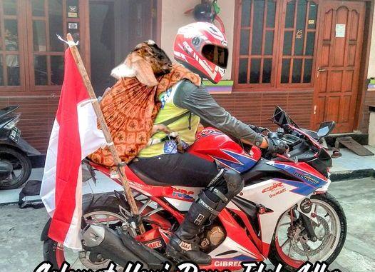 Gokil, biker bonceng kambing qurban kayak bonceng orang...hehehe