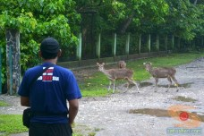 GPC goes to Pantai Pangandaran DSC_0325_tn