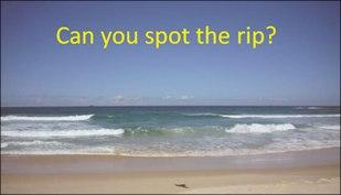 spot_the_rip