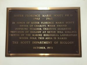 Shown above is a plaque in Maura Hall honoring Sister Florence Marie Scott, who was a Sister of Charity and a biology professor at Seton Hill. Bassett hopes to move the plaque into the third floor of the Boyle Center. Photo courtesy of P.Parise.