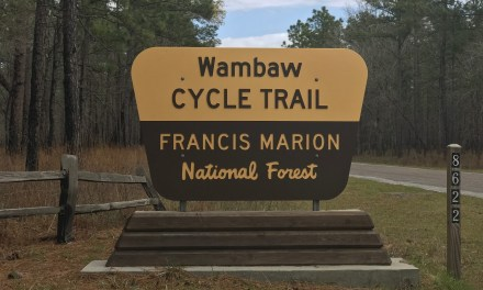 Save Wambaw Trails From Clear Cutting