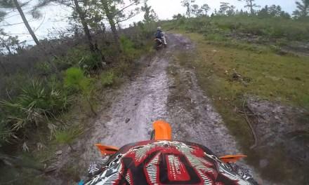 Cow Trail Postponed