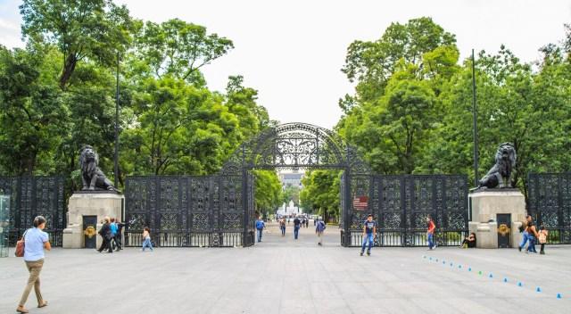 Realizan consultan para clausurar el Zoológico de Chapultepec