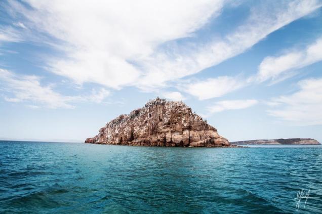 Isla Espíritu Santo la joya del mar de Cortés. Foto: Cortesía blog.yalkumexico.com