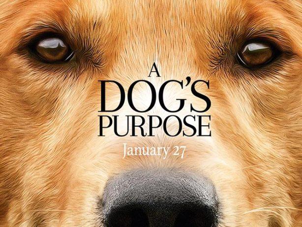 Filtran video de 'A Dog's Purpose' que podria afectar la taquilla