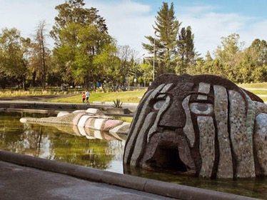 Conoce y disfruta del Zoológico de Chapultepec sin salir de casa