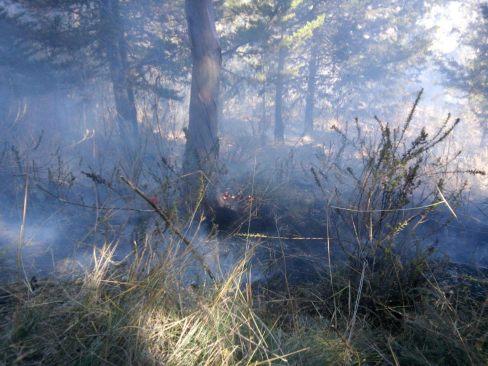 Atiende H. Cuerpo de Bomberos de Toluca incendio en el cerro de La Teresona