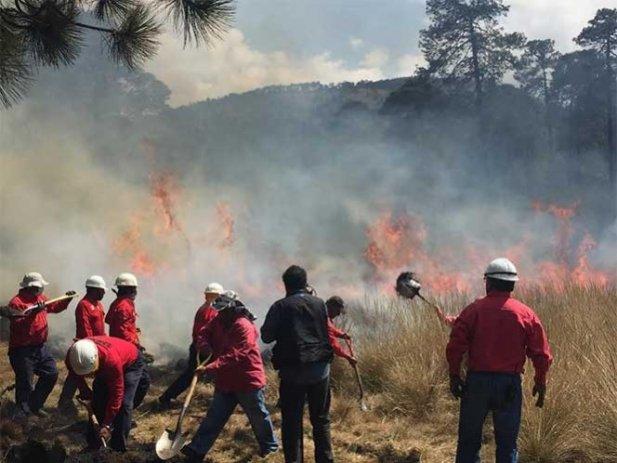 Edomex primer lugar en incendios; 166 en lo que va del año