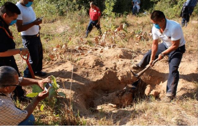 Hallan más de 200 cuerpos en fosas clandestinas en Veracruz