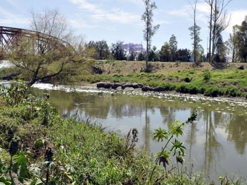Hallan cadáver en aguas del Río Lerma