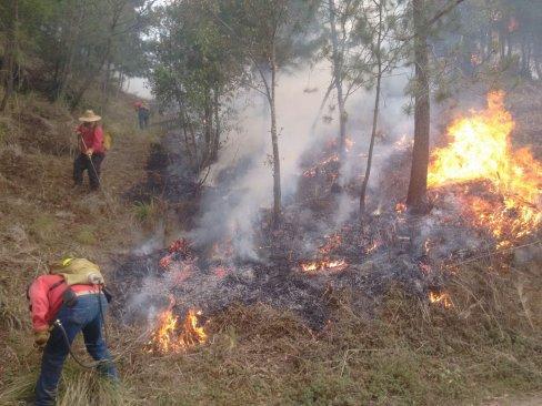 Controlan a 80% incendio forestal en Texcoco
