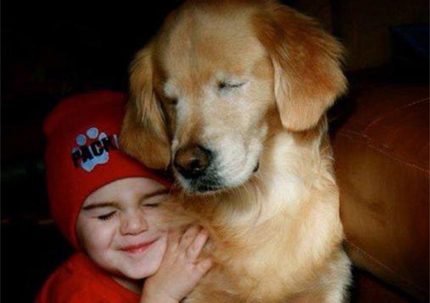 Muere Smiley, el perro terapeuta que nació sin ojos