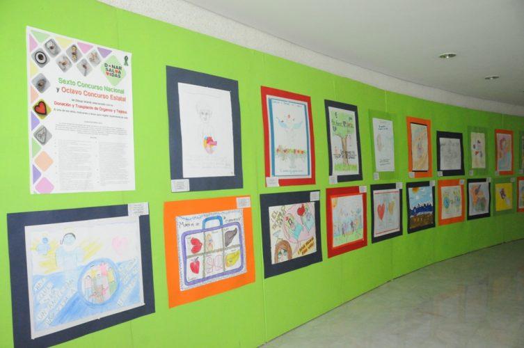 Convocan a niños Mexiquenses a Participar en Concurso para fomentar la Donación de Órganos