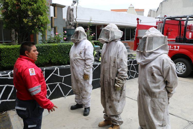 Bomberos de Toluca capacitados para atender emergencias por abejas