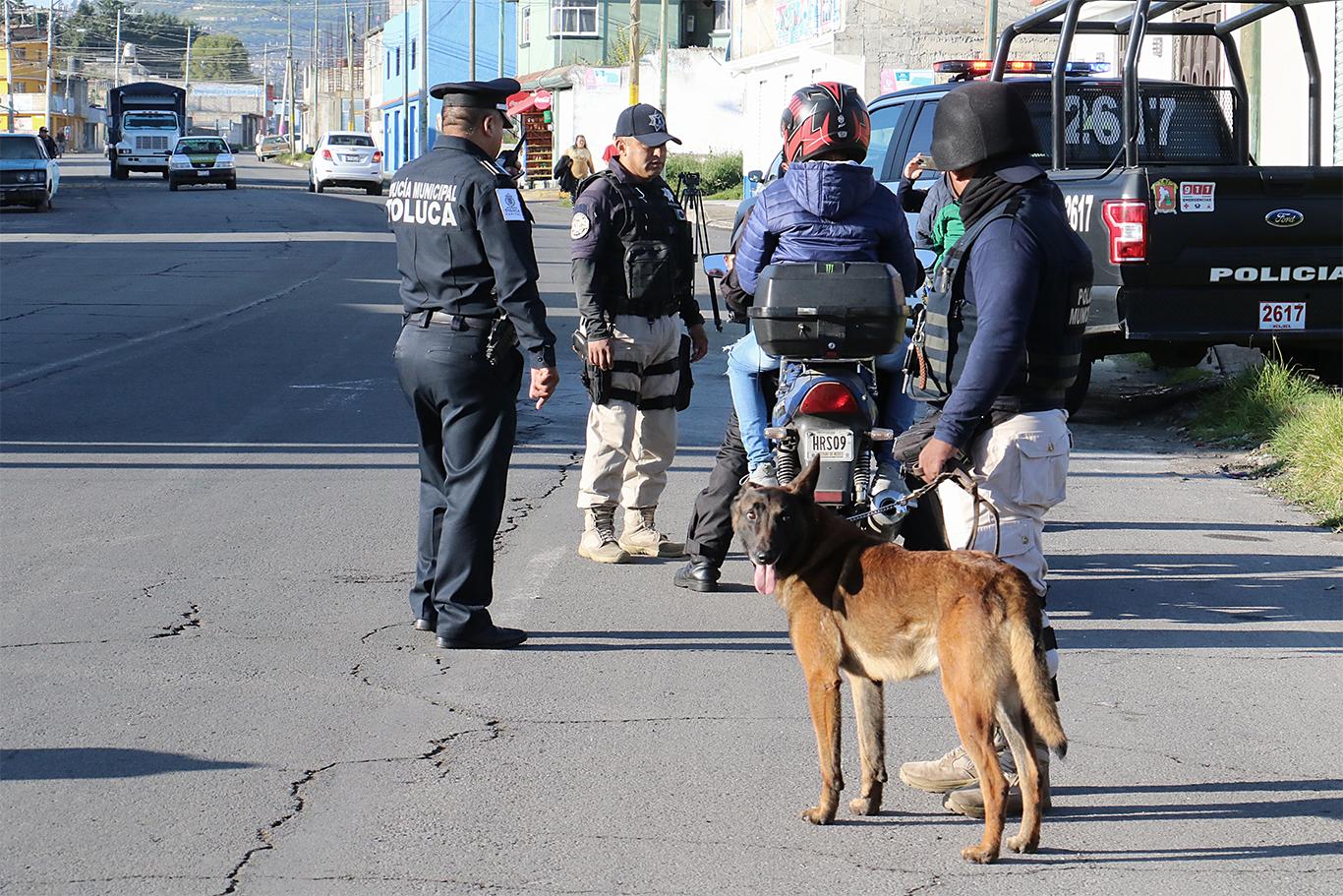 Agrupamiento Canino de Toluca vela por la seguridad de la población