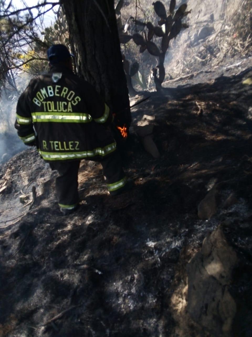 Bomberos de Toluca sofocan 34 incendios de pastizales en el presente año