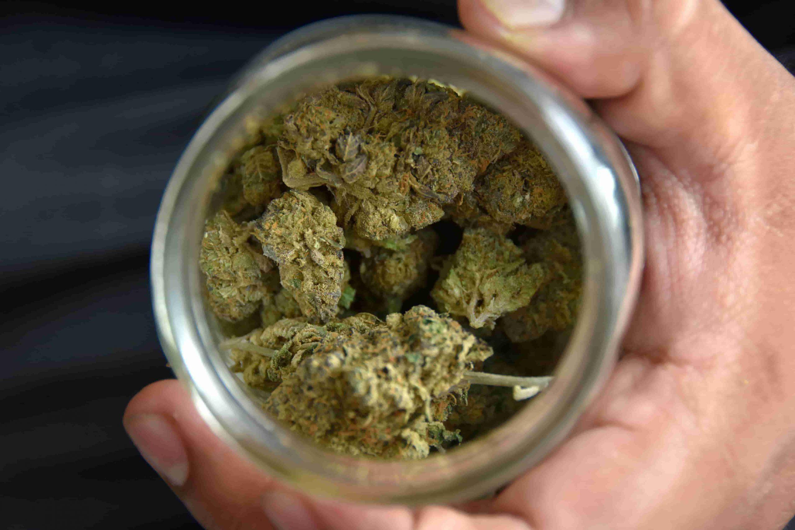 Esto es lo que debes saber sobre el consumo legal de marihuana