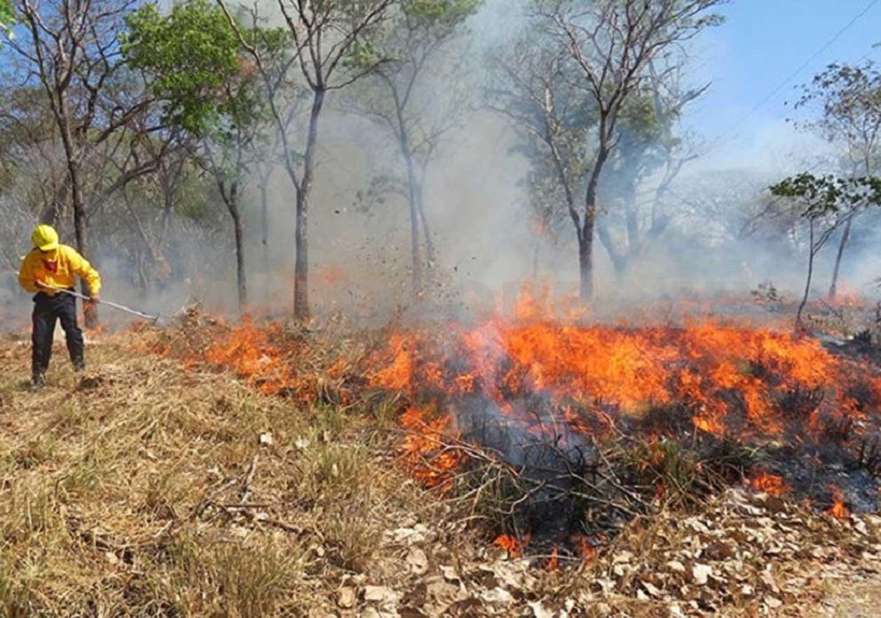 Llamado enérgico de Toluca para evitar quema de pastizales