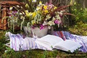 Buch und Blume