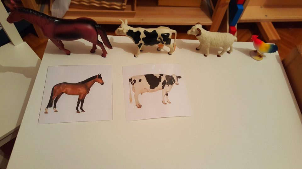 mise en paire image figurine montessori