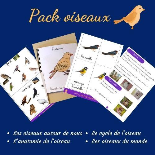 activités oiseaux #oiseaumontessori