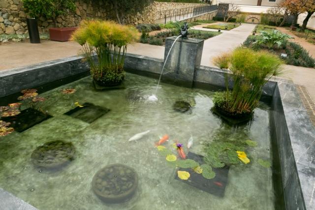 Санта-Моника Достопримечательности Вилла Гетти Травяной сад
