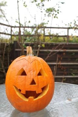 pumpkin-196239_640