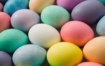 eieren-bilogisch-kleuren