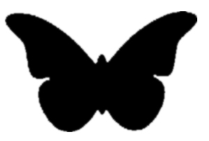 ciencia - butterfly
