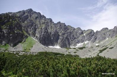 Buczynowa Dolina, z tyłu Granaty