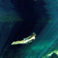 Five Cenotes You Must See in Mexico