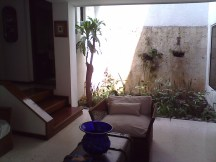 1-jardin