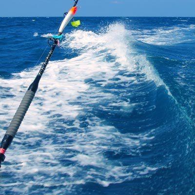Fishing trips in dubai and fishing boat rental dubai seven for Fishing in dubai