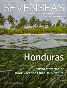 sevenseas media issue cover honduras marine conservation and travel