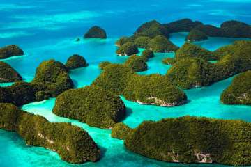 Raja Ampat, the most colorful reefs of the world sustainable tourism