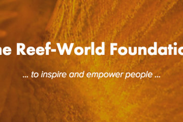 reef-world foundation